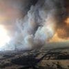 Celebrities take action to help fight Australia bushfire